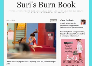 suris-burn-book